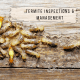 termite inspections and management