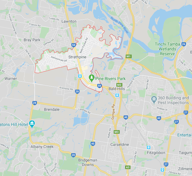 building-pest-inspection-strathpine