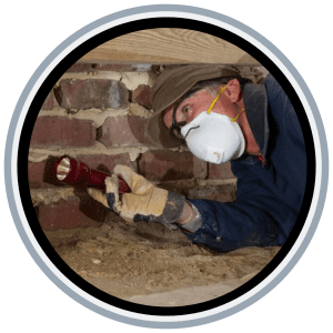 Building_and_pest_inspection_logan
