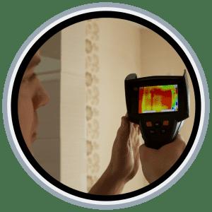 Termite_inspection_logan