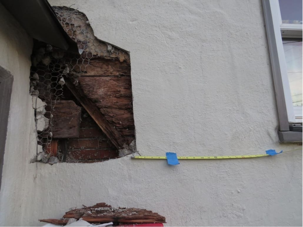 Annual Termite Inspection Cost Dedant Building And Pest Inspection