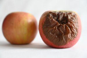 health impact of an unclean home