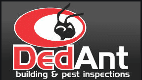 pre-purchase building and pest inspections caboolture