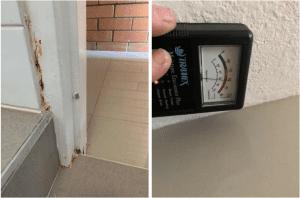building inspector caboolture moisture meter