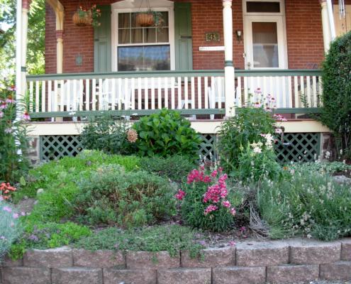 garden termite inspection
