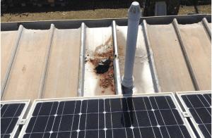 roof rust
