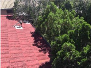roof cavity